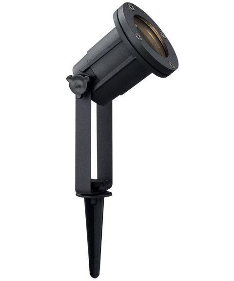 Spotlight spyd, Sort